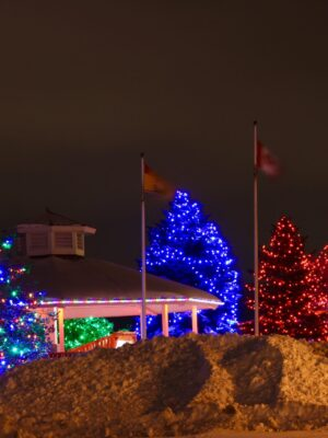 Riverview city using christmas lights as street lights to brighten up the city during the holidays