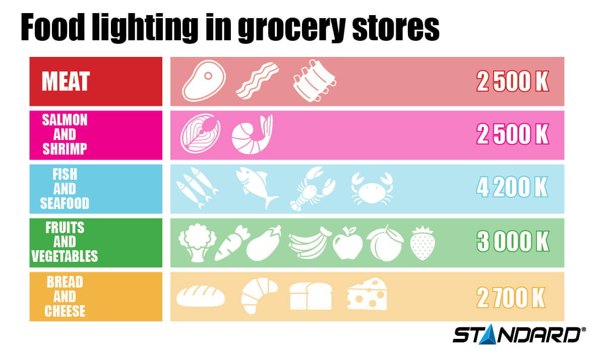 Grocery light infographic