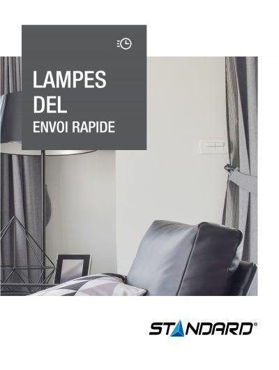 Lampes DEL Envoi Rapide